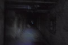 BPS Investigation Letchworth Village 05_15_16 Al Santariga photos1912196_934429666607658_6485782038275396393_n