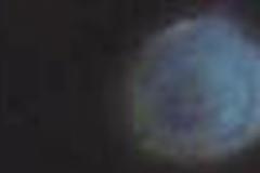 DSC00099 (1)orb